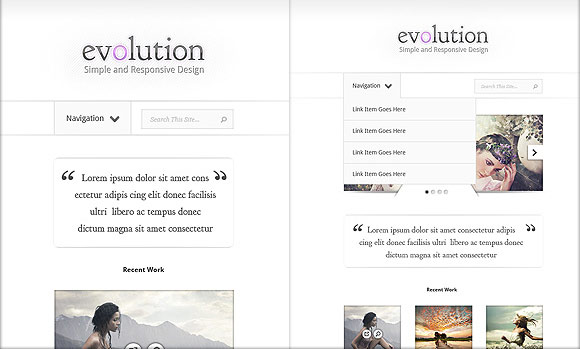 evolution elegant theme