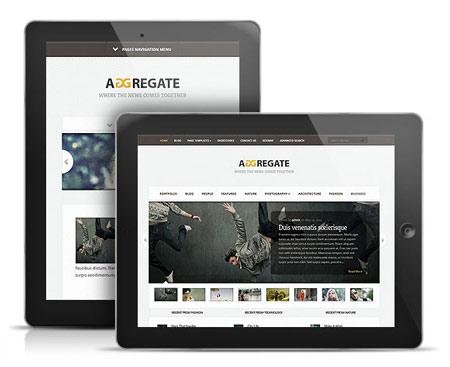 aggregate-elegant-theme