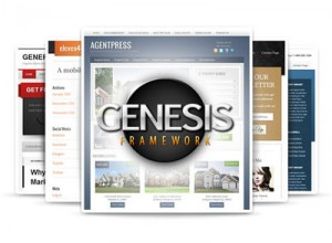 wordpress-themes-genesis