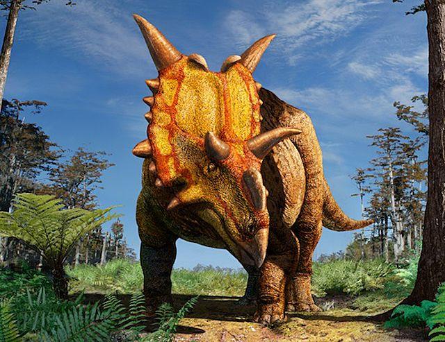 xenoceratops-dinosaur
