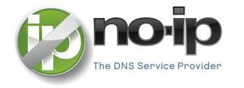 no-ip-domains