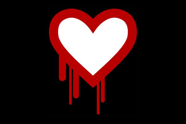 heart-bleed-bug